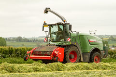 Forager de Fendt Katana 65 Photo libre de droits