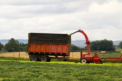 Forager on silage duty Royalty Free Stock Images