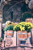Foral decoration in small european town Stock Photo
