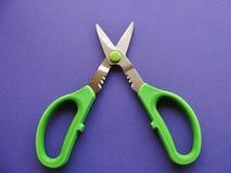 Forbici aperte dell'erba con la maniglia di plastica verde intenso Fotografie Stock Libere da Diritti