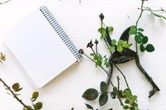 Forbici del giardino sui rami di un fondo di bianco delle piante Immagini Stock Libere da Diritti