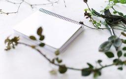 Forbici del giardino sui rami di un fondo di bianco delle piante Fotografia Stock Libera da Diritti