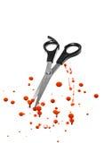 Forbici di taglio dei capelli e del sangue Fotografia Stock Libera da Diritti