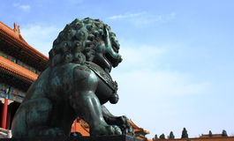 Forbidden City Lion. Chinese traditional bronze guardian lion in the Forbidden city Stock Photography