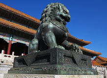 Forbidden City Lion Stock Images