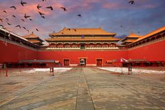 Beijing Forbidden City and flying pigeon royalty free stock photography