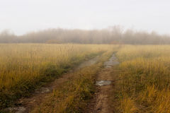 Forbidden countryside road in field at autumn fogy morning. Royalty Free Stock Photos