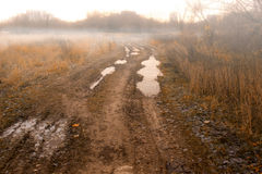 Forbidden countryside road in field at autumn fogy morning. Royalty Free Stock Image