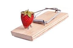 Forbidden fruit Stock Photo