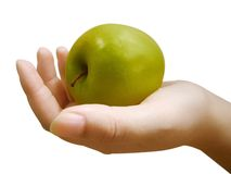 Forbidden fruit. Apple Stock Photography