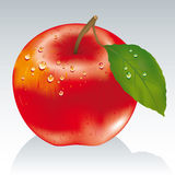 Forbidden fruit. Red apple with green leaf royalty free illustration