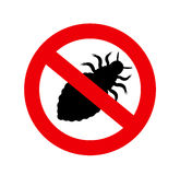Forbidden Lice Insect Royalty Free Stock Photos