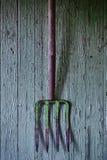 Forcado verde velho na madeira verde fotografia de stock royalty free