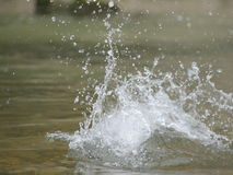 Force of water nature. Royalty Free Stock Images