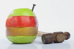 Forced crossing of apple species a metaphor about experiments in. Forced crossing of apple species. A metaphor about experiments in genetics and transgenic foods Royalty Free Stock Photos