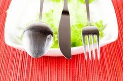 Forcella della lama del cucchiaio Fotografia Stock