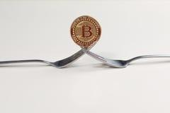 Forcella spaccata di Bitcoin Fotografie Stock Libere da Diritti