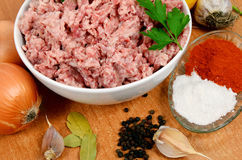 Forcemeat with spices Royalty Free Stock Photos
