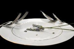 Forchette e cucchiai Immagini Stock