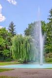 Forchheim City Park Stock Images
