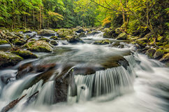 Forcone medio di piccolo fiume, Great Smoky Mountains Fotografie Stock