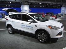 Ford échappent au gagnant de récompense Photo libre de droits