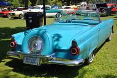 Ford 1956 Thunderbird Immagine Stock