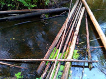 Ford across the rivulet. Timbered log across the small river Stock Photo