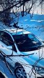 Ford Focus 2 Fotografia Stock Libera da Diritti