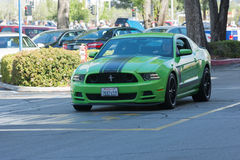 Ford Mustang上司302 库存照片