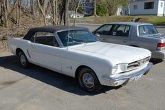 1964年Ford Mustang敞篷车 免版税库存照片