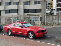 Ford Mustang第45周年版侧视图  免版税库存图片