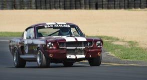 Ford Mustang赛车1965年fastback 免版税库存图片
