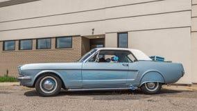1965年Ford Mustang,伍德沃德梦想巡航, MI 免版税库存照片
