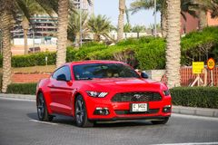 Ford Mustang fotografia de stock royalty free