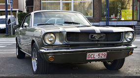 Ford mustang. A metallic Ford mustang outside on the street royalty free stock photos
