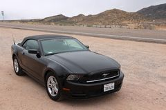Ford Mustang Immagine Stock