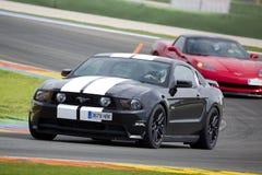 Ford Mustang 2013 Royalty-vrije Stock Afbeeldingen