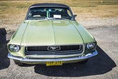 Ford mustang Fotografia Stock