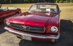 Ford Mustang 免版税库存照片