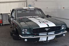 Ford mustang Obraz Stock