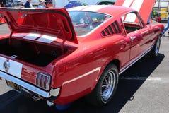 1965年Ford Mustang 免版税库存照片