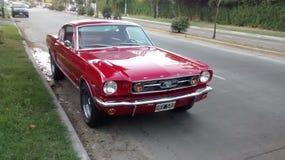 Ford Mustang fotografía de archivo