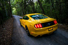 Ford mustang Fotografia Stock