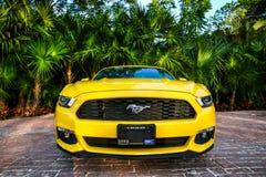 Ford mustang Obraz Royalty Free