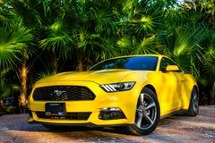 Ford mustang Zdjęcia Stock