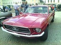 Ford-Mustang ausstellung lizenzfreie stockfotografie