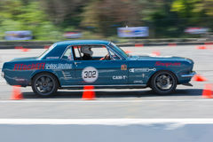 Ford Mustang in autocross Stock Image
