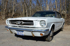 1964 Ford Mustang Convertible Royalty-vrije Stock Foto