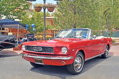 Ford Mustang. This is a 1966 Ford Mustang convertible powered by a small block 289 C.I. V-8 engine. Since the Mustang came with an in line six cylinder engine royalty free stock photos
